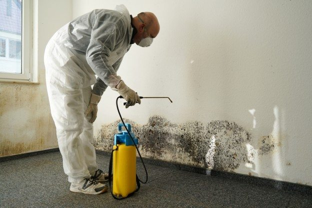 speak with an experienced tenant's rights lawyer to determine if your mold outbreak was caused by landlord negligence